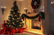 کاج کریسمس